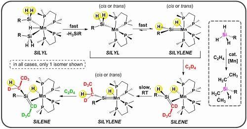54 TOC_graphic 2019 Chem Sci.jpg